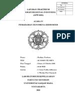 Laporan Praktikum Geografi Regional Indonesia - Acara IV