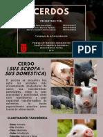 Porc i Cultura