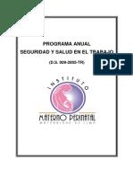 Programa de Gestión de La Seguridad y Salud en El Trabajo