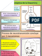 199046802-Dopamina-y-Transmision-Dopaminergica.pptx