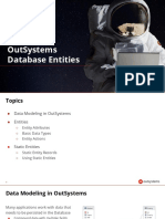 3.1-Database Entities (1).pdf