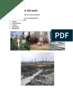 Monografia-Contaminación del suelo