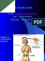 Endocrine System Part 1
