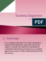 5 Sistema Digestivo 2