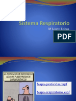 6 Sistema Respiratorio