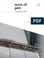 The_Future_of_Hydrogen IEA 201906.pdf