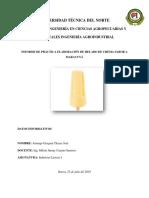 Informe de practica de helados