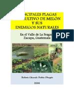 melon-plagas.pdf