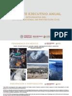 Sistema Nacional Protección Civil Reporte Ejecutivo Anual, 19dic19
