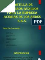 cartillla primeros auxilios ACERIAS DE LOS ANDES S.A.S.pptx