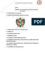 LANOMETRO.docx