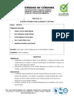 INFORME # 6 de Quimica Organica.doc