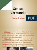 Geneza carbunelui