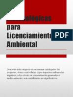 Guías Metodológicas Para Licenciamiento Ambiental