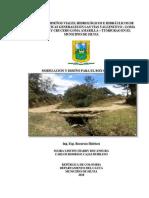 MODELACIÓN PARA BOX COULVERT.pdf