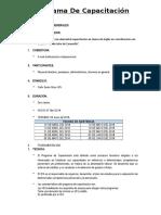 Modelo de Programa de Capacitacion