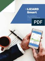 Folder A4 Lizard Smart Internet