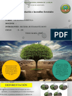 DIAPOSITIVA DE DEFORESTACION.pdf