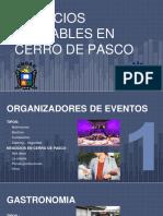 Negocios en Cerro de Pasco Ppt