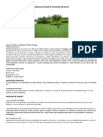 GRAMA BATATAIS Manual de Plantio