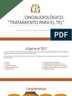 TALLER FONOAUDIOLÓGICO.pptx