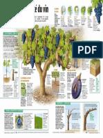 Infographie Carrefour - Les secrets du vin (pages 2 et 3) - Octobre 2000