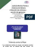 VIOLENCIA VICTIMAS Y AGRESORES