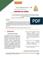 revista sindrome de down (1).docx