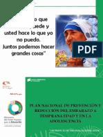 Plan nacional de prevención embarazo