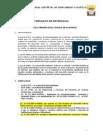 TDR_PDU_AUCAYACU.doc