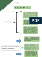 CIRCULANTE.docx