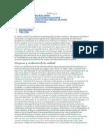 FILOSOFIA DE LA CALIDAD.docx