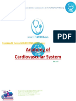 anatomy_cvs1.pdf