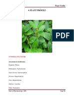 4. plant profile 2