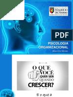 Psicologia Nas Organi.