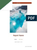 Sample-Testing-Report.pdf