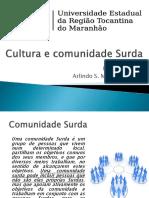 4 Cultura e Comunidade Surda