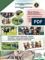 PPT CONTABILIDAD AGROPECUARIA (1).pptx