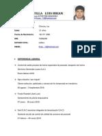 Monge Castilla Luis Brian Cv o Curriculum (1)