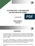 SeminarioCytecSXA.Reghezza.pdf