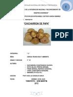 105910977-Proyecto-chicharron-de-Papa.doc