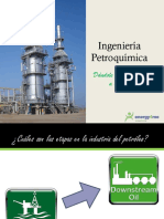 Ingeniería-Petroquímica (1).pdf