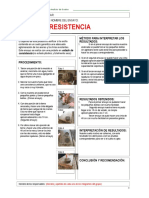 resistencia.doc