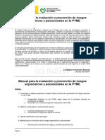 Manual para la evaluación y prevencion de riesgos ergonomicoas y psicosociales en las PYME.pdf