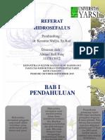 REFERAT 2 HIDROSEFALUS.ppt