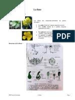 07_La-fleur.pdf