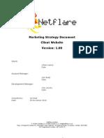 Netflare Marketing Strategy Template