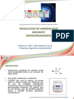 clase producción aminoacidos.pdf