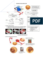 Diseases_of_the_Middle_Ear.pdf