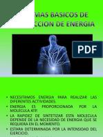 Sistemas basicos de produccion de energia.pdf